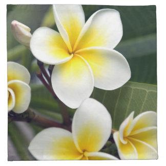 Islas de cocinero de la flor del Frangipani Servilleta