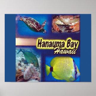 Islas de Hawaii de la bahía de Hanauma de la Posters