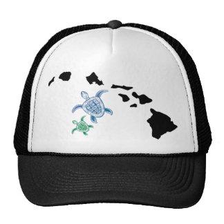 Islas de Hawaii - tortuga Gorro