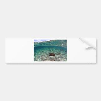 Islas de las Islas Galápagos hermosas de la laguna Pegatina Para Auto