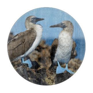 Islas de las Islas Galápagos, isla de Isabela Tabla Para Cortar