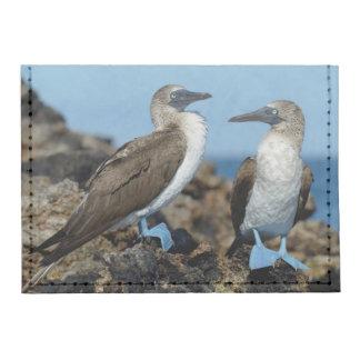 Islas de las Islas Galápagos, isla de Isabela Tarjeteros Tyvek®
