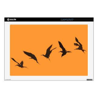 Islas de las Islas Galápagos magníficas del pájaro Skins Para 43,2cm Portátil