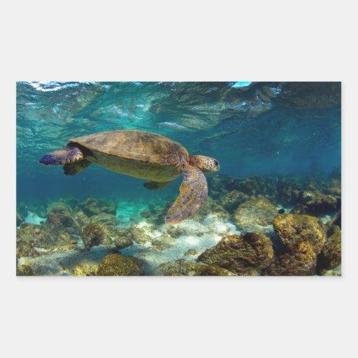 Islas de las Islas Galápagos subacuáticas de la Rectangular Altavoces