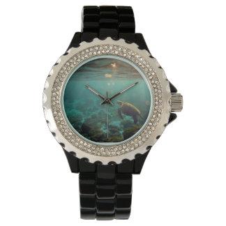 Islas de las Islas Galápagos subacuáticas de la Reloj