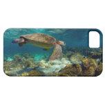 Islas de las Islas Galápagos subacuáticas de la to iPhone 5 Case-Mate Fundas