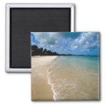 Islas del Caribe, de sotavento, Antigua, Dickenson Imanes De Nevera