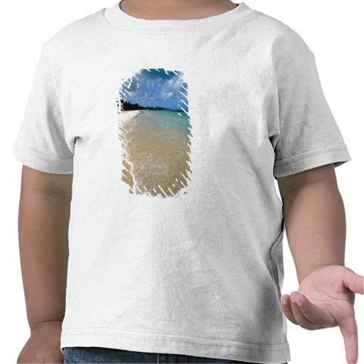 Islas del Caribe, de sotavento, Antigua, Dickenson Camisetas