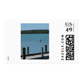 islas del fishin del capri sellos postales