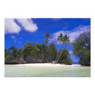 Islas Palau de la roca Cojinete
