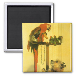 Islay, Tilco, a Macaw and 2 Love Birds by Landseer Refrigerator Magnet