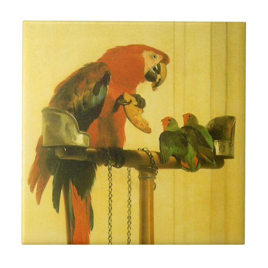 Islay, Tilco, a Macaw and Love Birds by Landseer Ceramic Tile