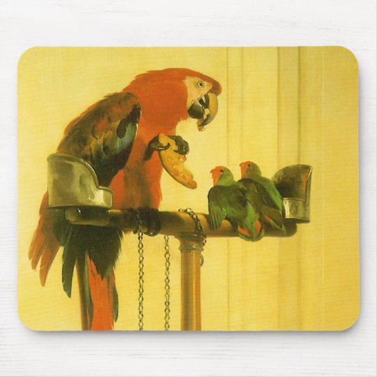 Islay, Tilco, a Macaw and Love Birds by Landseer Mouse Pad