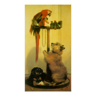 Islay, Tilco, a Macaw and Love Birds by Landseer Poster