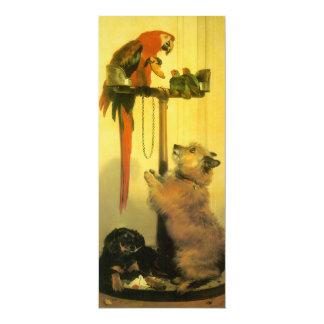 Islay, Tilco, un Macaw y 2 pájaros del amor por Invitaciones Personalizada