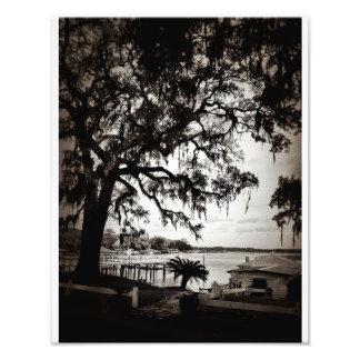 Isle Of Hope Photo Print