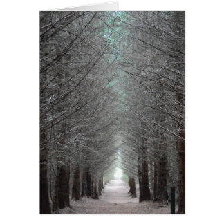 Isle of Mull Forest Card