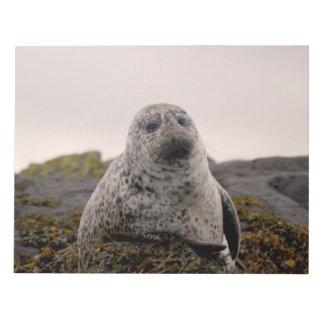 Isle of Skye Memo Note Pad