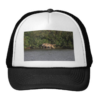 isle royale wolf trucker hat