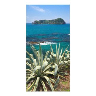 Islet and coastal vegetation card