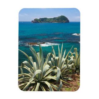 Islet and coastal vegetation magnet