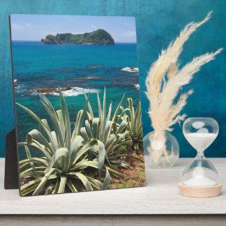 Islet and coastal vegetation plaque