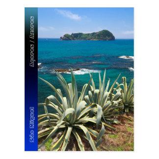 Islet and coastal vegetation postcard