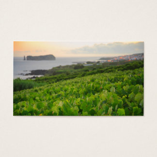 Islet and Vineyards Business Card