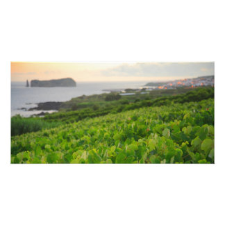 Islet and Vineyards Card