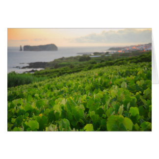 Islet and Vineyards Greeting Card