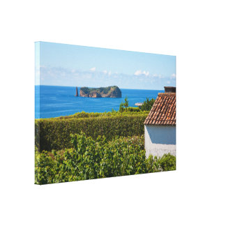 Islet in Azores Canvas Print