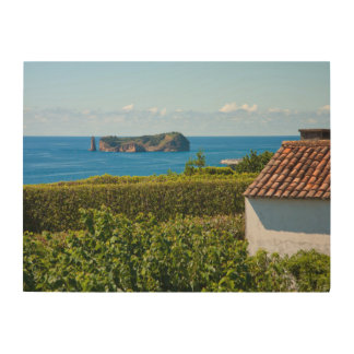 Islet in Azores Wood Wall Art