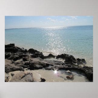 Isleta de los Cocos - orilla rocosa 2 Póster
