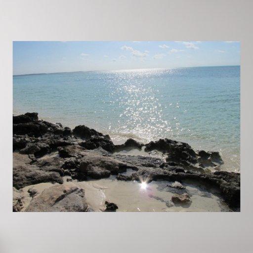 Isleta de los Cocos - orilla rocosa 2 Poster