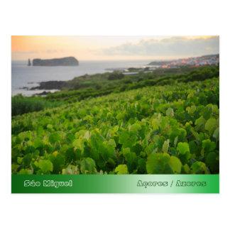 Islote y viñedos tarjetas postales