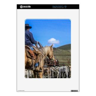 ISO1250FL55q-3 iPad Decal