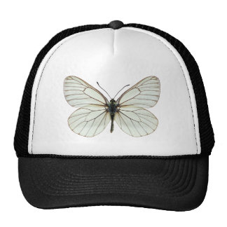 Isolated Black-veined White butterfly Trucker Hat