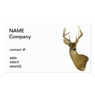 isolated buck business card