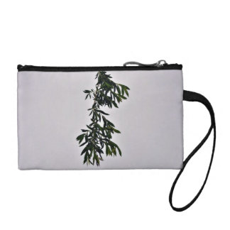 Isolated dark green branch against white backgroun coin wallet