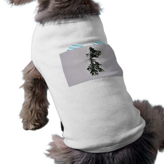 Isolated dark green branch against white backgroun pet clothing