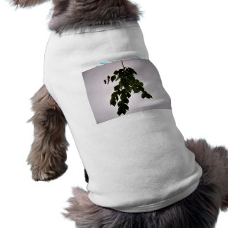 Isolated dark green leaves branch dog t-shirt