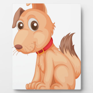 Isolated dog on white photo plaque