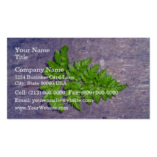 Isolated fresh fern leaf business card template