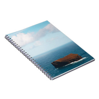 Isolated islet notebook