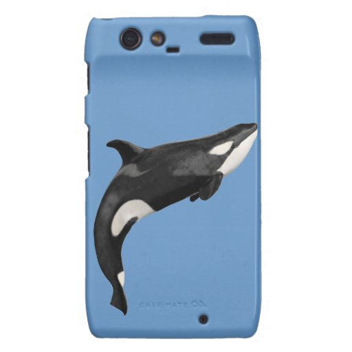 Isolated killer whale droid RAZR covers