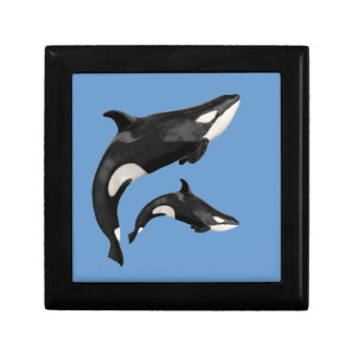 Isolated killer whale jewelry boxes
