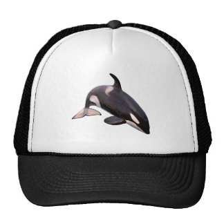 Isolated killer whale jumping trucker hat