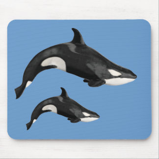 Isolated killer whale mouse pad