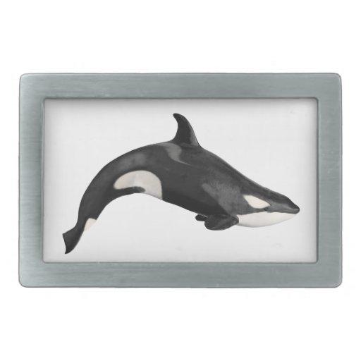 Isolated killer whale rectangular belt buckle