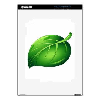 Isolated leaf on white iPad 2 skins
